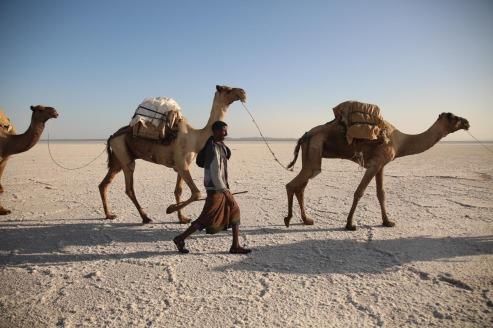 Exposição PkB Continente Africano de Henrique Schmeil 2