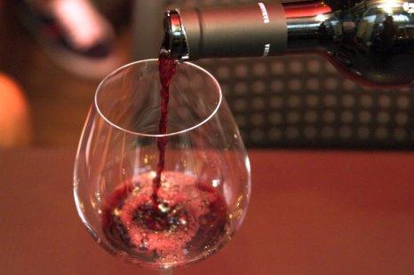 vinho degustacao - Terra Madre